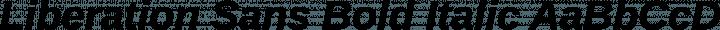 Liberation Sans Bold Italic free font