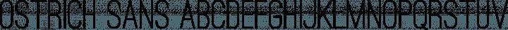 Ostrich Sans font family by Tyler Finck