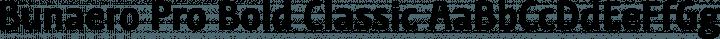 Bunaero Pro Bold Classic free font