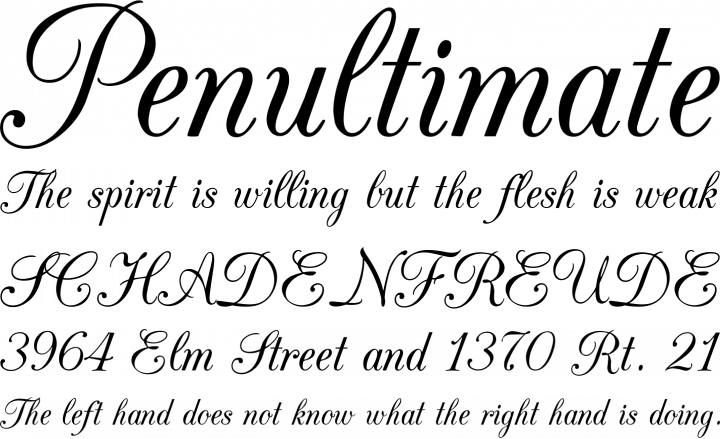 CAC Champagne Font Phrases