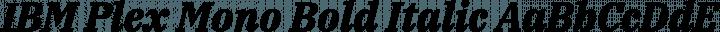 IBM Plex Mono Bold Italic free font