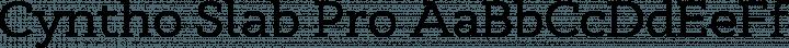 Cyntho Slab Pro font family by Mint Type
