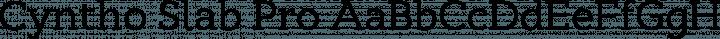 Cyntho Slab Pro Regular free font