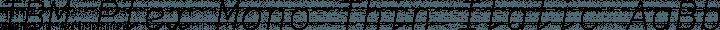 IBM Plex Mono Thin Italic free font